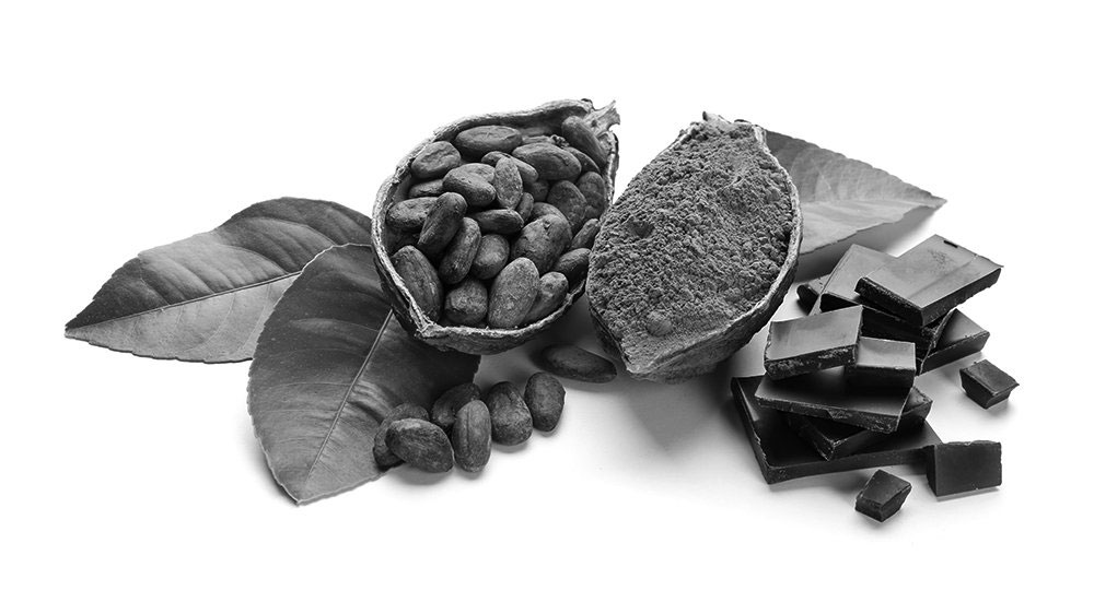 Healthy cocoa products on white background sourced by The Greater Goods Food Consultants