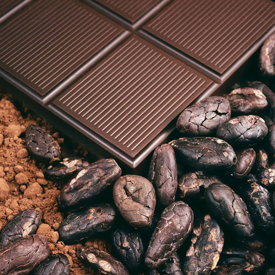 Chocolate, cocoa beans, and cocoa powder sourced by the consultants at The Greater Goods in Canada